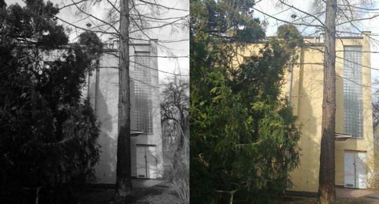 W Huawei Mate 9 Pro aparaty są dwa - kolorowy i czarno-biały. Każde zdjęcie powstaje z połączenia obu tych obrazów.