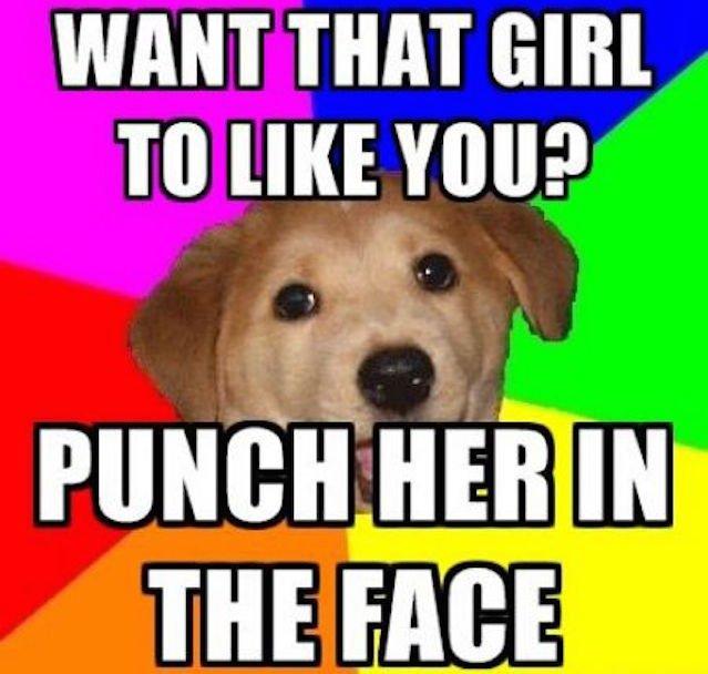 Advice Dog, jeden z pierwszych internetowych memów.