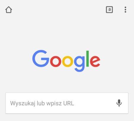 Jedna z niespodzianek przemyconych przez programistów Google'a