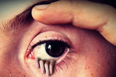 Oko prawdę ci powie.