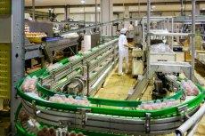 Ministerstwo rolnictwa chciałoby stworzyć z przejętych spółek olbrzymi spożywczy holding.
