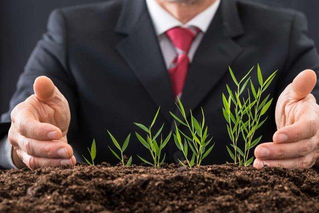 Wszystko, co startupowcy muszą wiedzieć o rozmowach z inwestorem. Bez należytej uwagi można wpaść w pułapkę