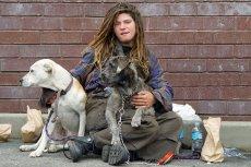 O osobach bezdomnych krąży opinia, że znają każdy zakątek miasta. W ocenie niektórych biur podróży stanowią doskonały materiał na przewodników wycieczek