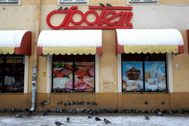 Jeden ze sklepów Społem w Lublinie